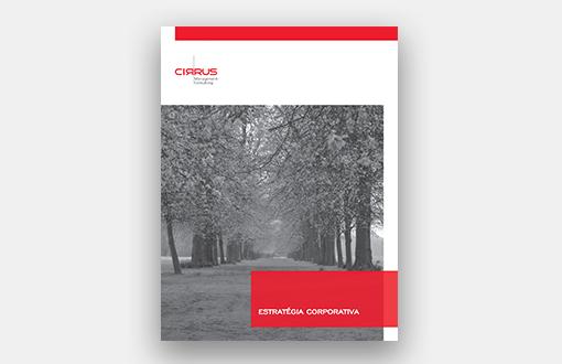 Cirrus Management Consulting